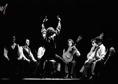Caballeros Flamencos MARIO MAYA