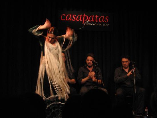 CasaPatas3