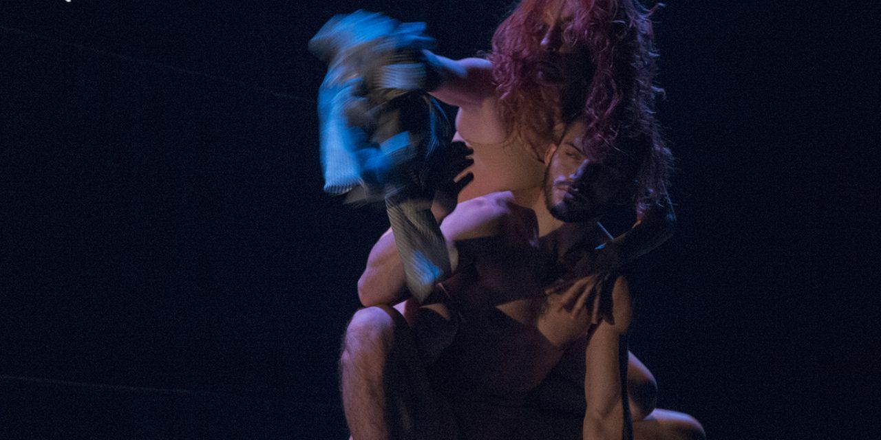 """Regards de Alicia Soto-Hojarasca en """"BB"""" BAILAR EN LA BERLANGA"""