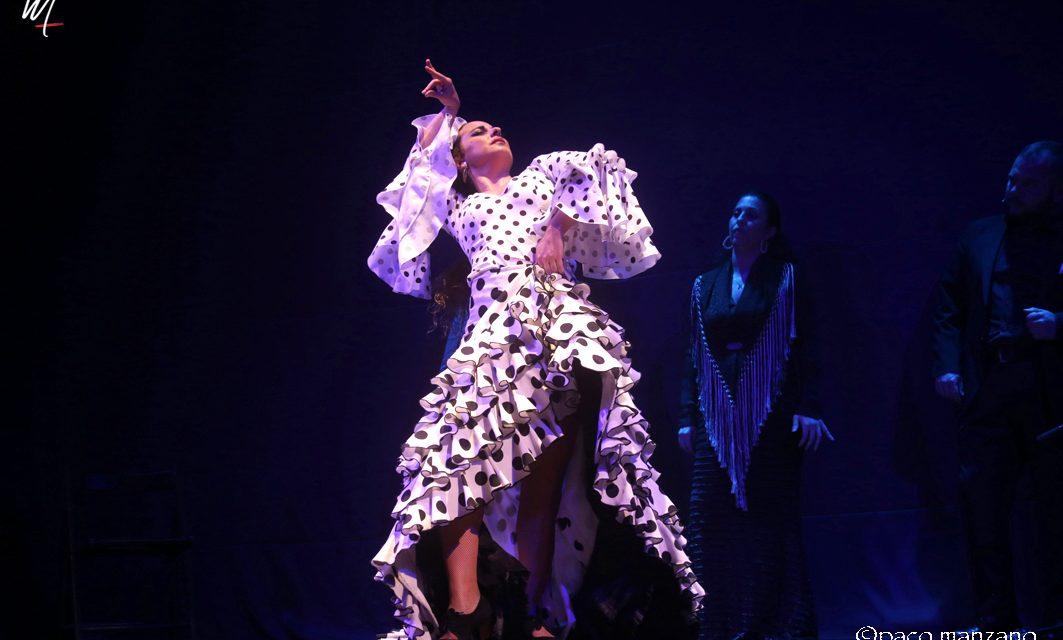 Jornada flamenca en Flamencos y Mestizos