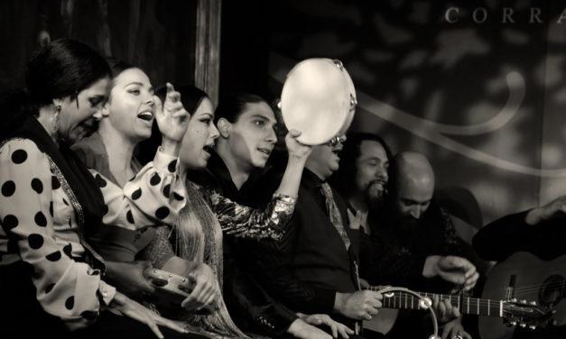 Zambomba Flamenca desde el Corral de la Morería.