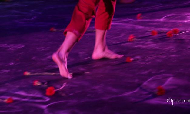 ALEJANDRA, proyecto CRECE, en el Teatro Circo Price de Madrid.